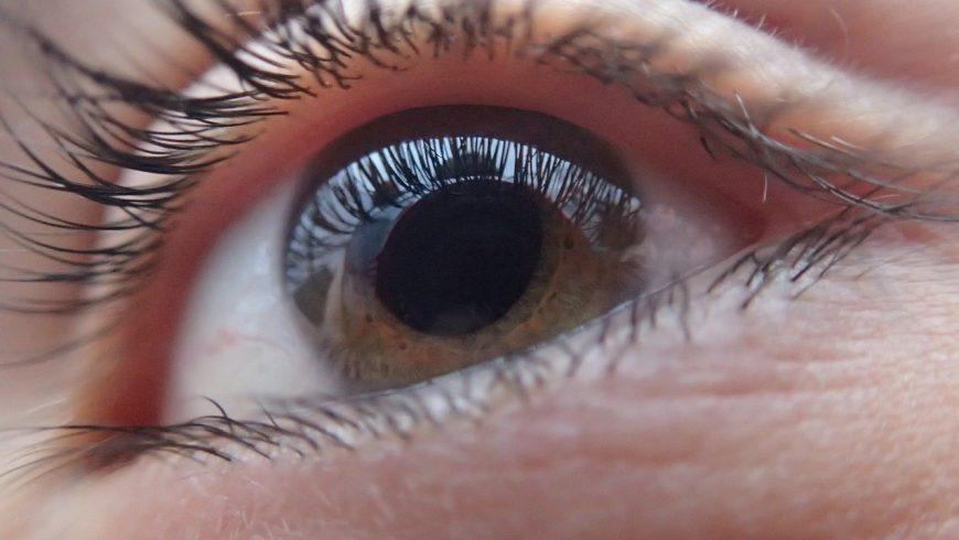 26 de maio – Dia Nacional de Combate à Cegueira causada pelo Glaucoma