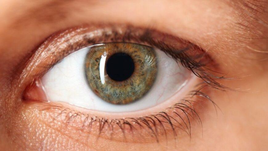 Exames do Nervo Óptico